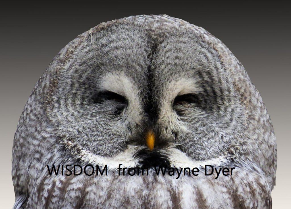 10 Pieces of Wisdom