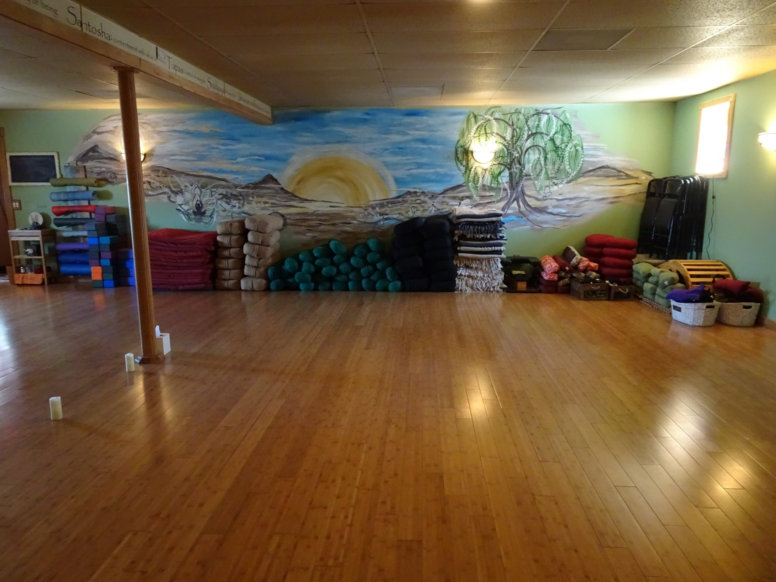 Yoga teacher Training in the Finger Lakes